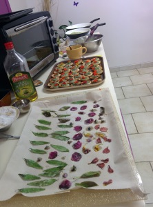 preparations2