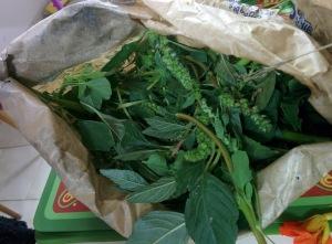 sac herbes
