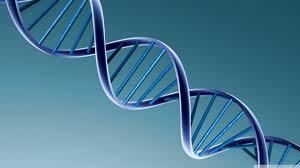 Santé : Séquencer le génome en 10 minutes est maintenantpossible