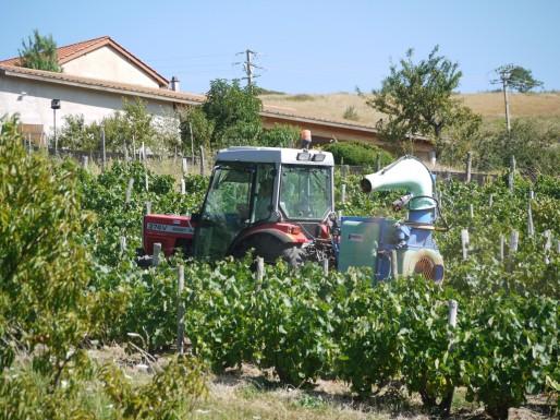 Les pesticides, du champ jusqu'auxmaisons