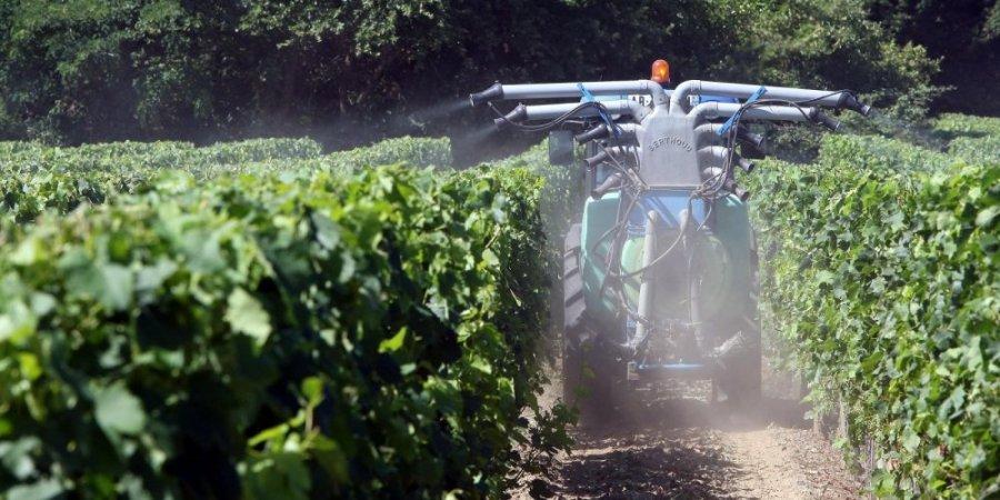 Cash Investigation : «20% des pesticides concentrés sur 3% de la surface agricole»