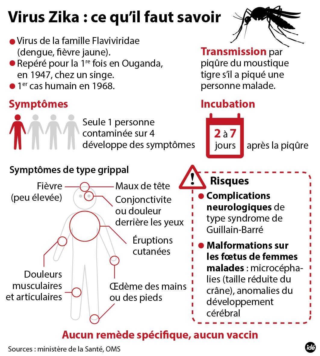 zika risques