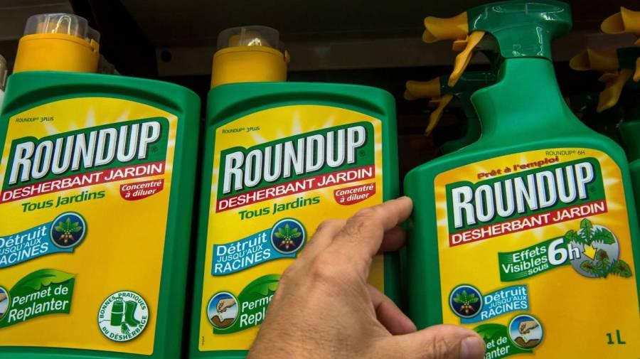 Monsanto sommé de dévoiler ses études toxicologiques sur leRoundup