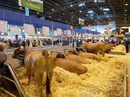 Coup de gueule du jour : maltraitances animales salon agriculture2015