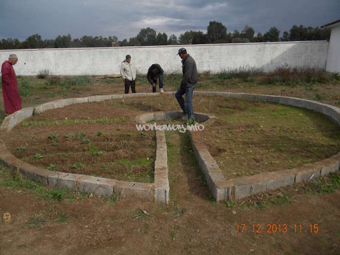 brachoua-permaculture-maroc-developpement-durable-2