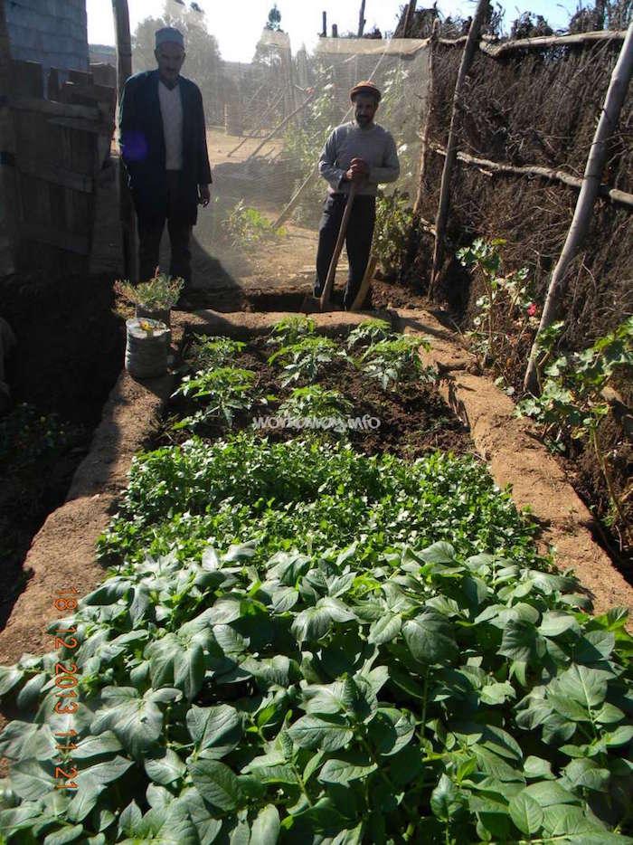 brachoua-permaculture-maroc-developpement-durable-3.jpg