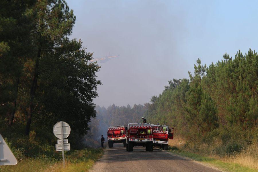 Nature : elle paye son tribut à l'été : Feu de forêt à la frontière des Landes et de la Gironde : l'incendie estfixé