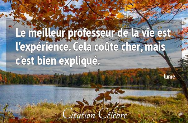Le meilleur professeur de la vie est l'expérience. citation pour méditation