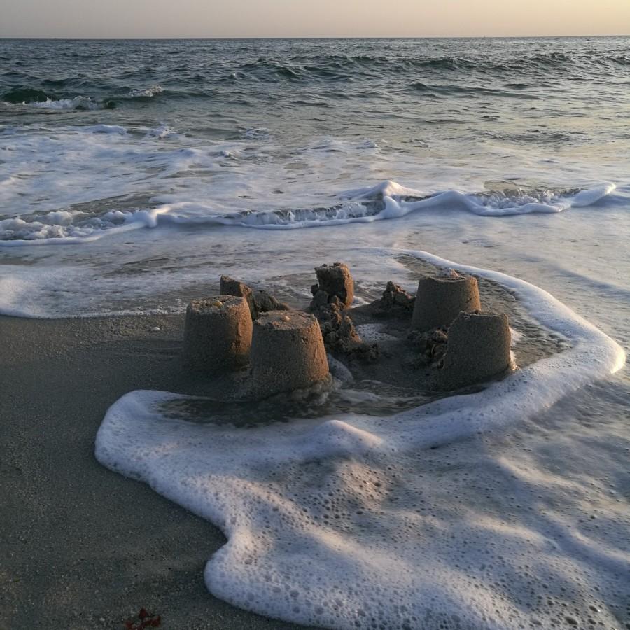 Actualité : pétition pour la réouverture des plages dès le 11 mai2020